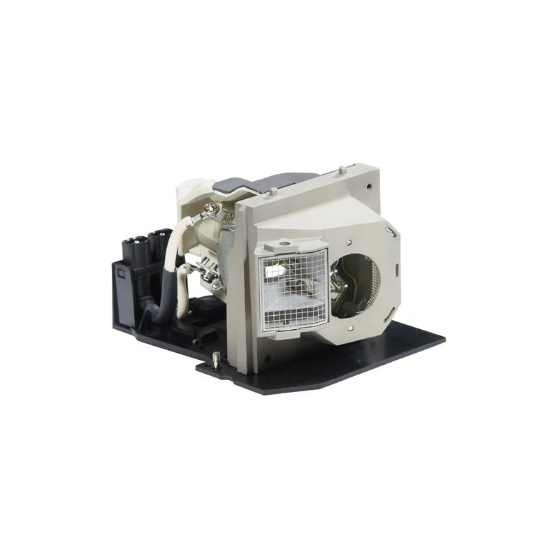 Philips 725 10046 Lamp Amp Housing For Dell Projectors
