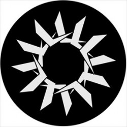 Rosco Steel Gobo - Symmetric 10