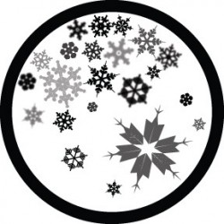 Rosco Glass Gobo - Moment Factory Snowflake
