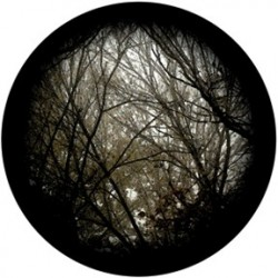 Rosco HD Plastic Gobo - Autumn Branches