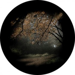 Rosco HD Plastic Gobo - Autumn Glade