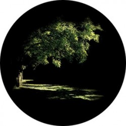 Rosco HD Plastic Gobo - Summer Glade