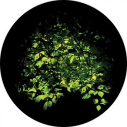 Rosco HD Plastic Gobo - Spring Bower