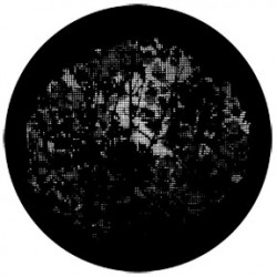 Rosco HD Plastic Gobo - Meshed Saplings