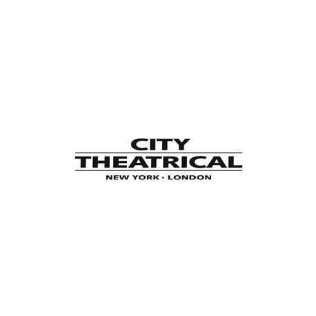 City Theatrical Ministrip Color Frame - Black