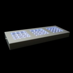 Fortune Light Base - White LEDs - 5in. x 13in.