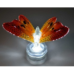 Fortune Sparkle Lite Butterfly Orange - 5 Pack