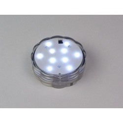 Fortune RC Submersible 10 White LEDs