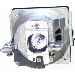 Phoenix SP-LAMP-025 Lamp & Housing - For InFocus Projectors