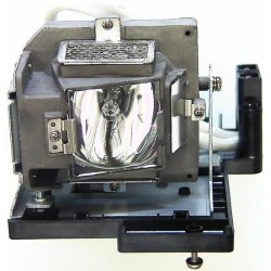 Philips DE.5811100256 Lamp & Housing - For Optoma Projectors
