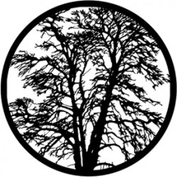 Rosco HD Plastic Gobo - Bare Tree