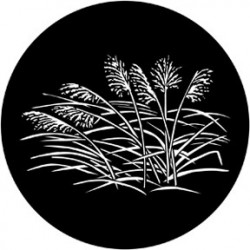 Rosco Steel Gobo - Grasses 2