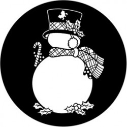Rosco Steel Gobo - Frosty