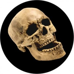 Rosco Glass Gobo - Laughing Skull