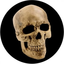 Rosco Glass Gobo - Yorick Skull