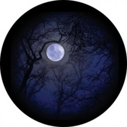 Rosco Glass Gobo - Howling Moon