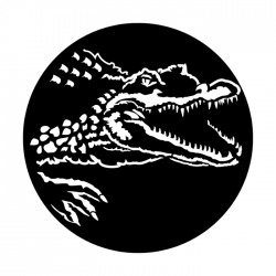 Apollo Metal Gobo 4141 Africa Crocodile