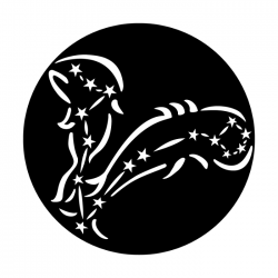 Apollo Metal Gobo 7023A Constellations Pisces The Fish