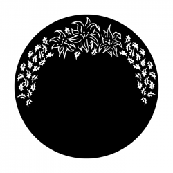 Apollo PrintScenic Glass Gobo ME1024 Poinsettia