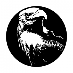 Apollo PrintScenic Glass Gobo ME1135 Bald Eagle