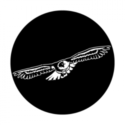 Apollo PrintScenic Glass Gobo ME1136 Soaring Eagle
