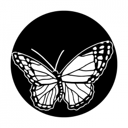 Apollo PrintScenic Glass Gobo ME1160 Butterfly