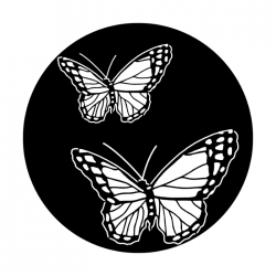 Apollo PrintScenic Glass Gobo ME1170 Butterfly Double
