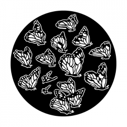 Apollo PrintScenic Glass Gobo ME1180 Butterfly Group