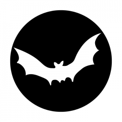 Apollo PrintScenic Glass Gobo ME3042 Plain Bat