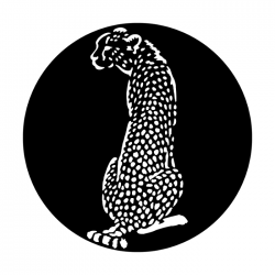 Apollo PrintScenic Glass Gobo ME4113 Africa Cheetah