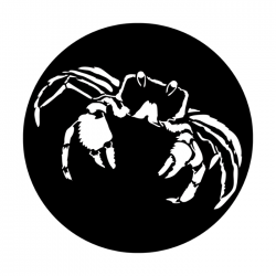 Apollo PrintScenic Glass Gobo ME4142 Sea Crab