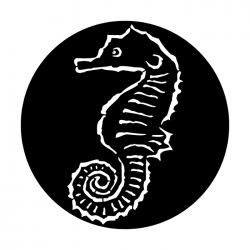 Apollo PrintScenic Glass Gobo ME7006 Sea-Sea Horse