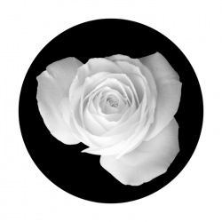 Apollo SuperRes Glass Gobo 0048 Rose