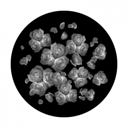 Apollo SuperRes Glass Gobo 0063 Breakup Roses