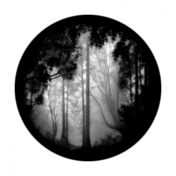 Apollo SuperRes Glass Gobo 0081 Forest-Misty