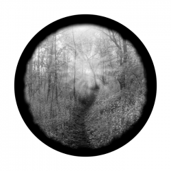 Apollo SuperRes Glass Gobo 0082 Forest