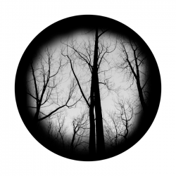 Apollo SuperRes Glass Gobo 0170 Haunted Forest