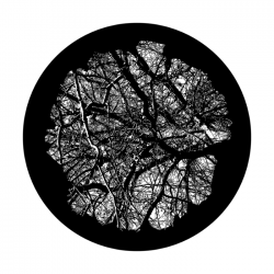 Apollo SuperRes Glass Gobo 0225 Wise Old Tree