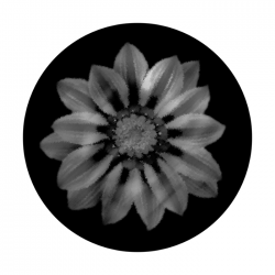 Apollo SuperRes Glass Gobo 6085 Daisy Smudged