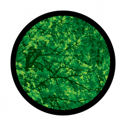 Apollo 3 Color Glass Gobo 0096 Trees - Far