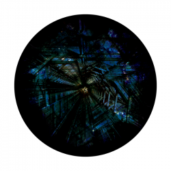 Apollo ColourScenic Glass Gobo 0035 Looking Up