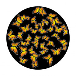 Apollo ColourScenic Glass Gobo 0146 Butterfly Breakup