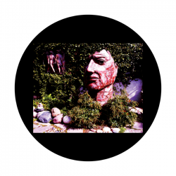 Apollo CSDS Glass Gobo 8065 D. Antonakos - Rock Garden