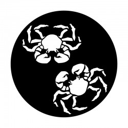 Apollo Metal Gobo 9115 Dos Crabs