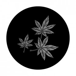 Apollo SuperRes High End Glass Gobo 1323 Maple Leaf