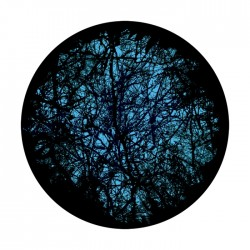 Apollo 2 Color Glass Gobo 1206 Deep Forest 2