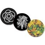 Plant, Flower, & Tree Glass Gobos
